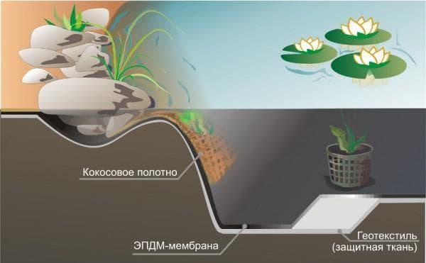 EPDM-мембрана в пруду