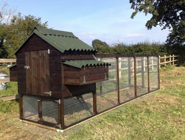как правильно построить курятник на даче