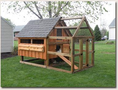 Учимся строить птичник практичные советы