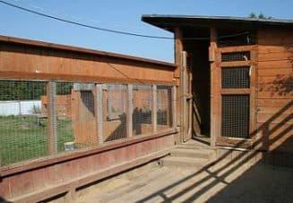 проект сооружения для собак