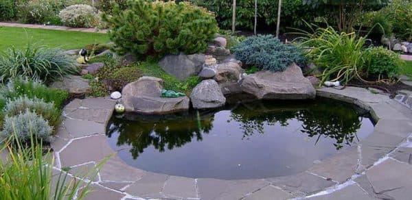 пруд на даче для разведения рыбы овальной формы