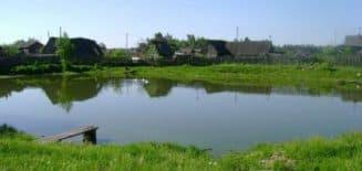 пруд на даче для разведения рыбы большого размера