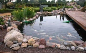 пруд для разведения карпов дома