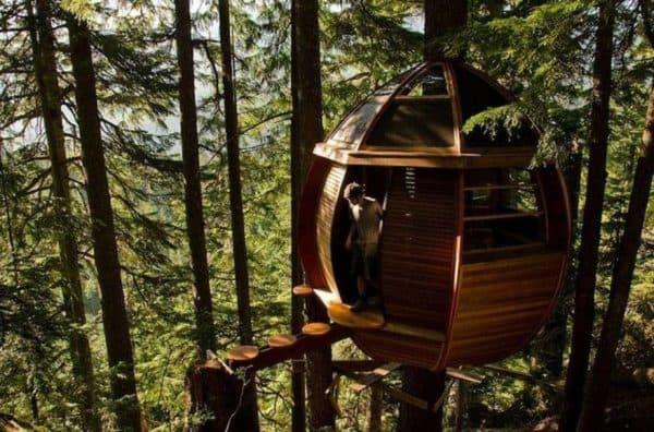 Лучший проект дома на дереве