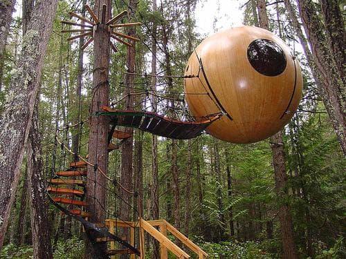 Необыкновенный проект домика на дереве