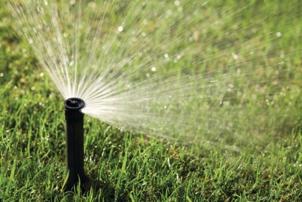 Распылитель воды для полива
