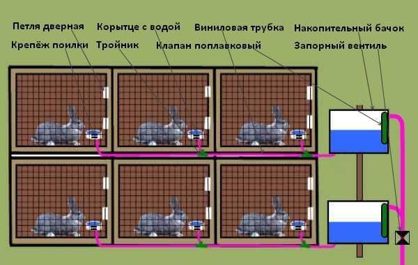 как оборудовать клетку для кроликов