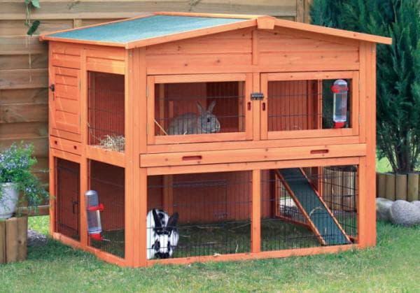 клетки для кроликов с выгулом