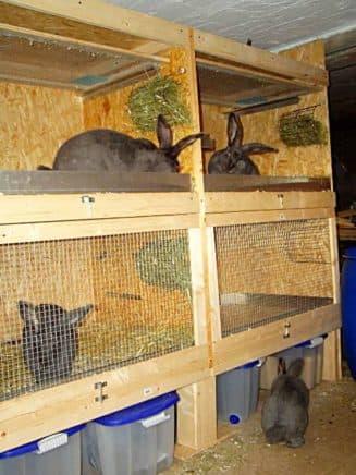 многоярусные крольчатники для дачи