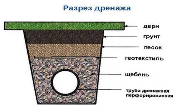 дренаж участка для газона