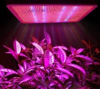 фитолампы светодиодные лампы для растений