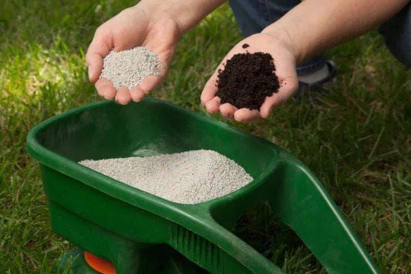 азотные удобрения для газона