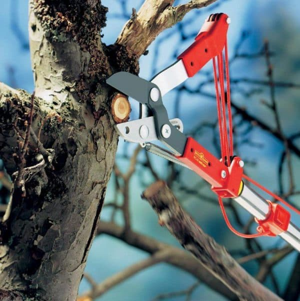 рукоять секатора для обрезки высоких деревьев