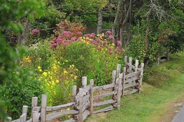 цветы в стиле кантри в ландшафтном дизайне