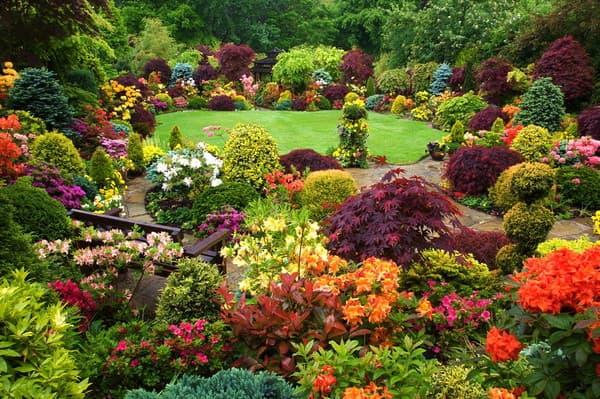 цветочное сочетание в пейзажном стиле