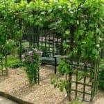 Виды опор для винограда