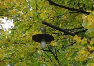 виды газоразрядных ламп