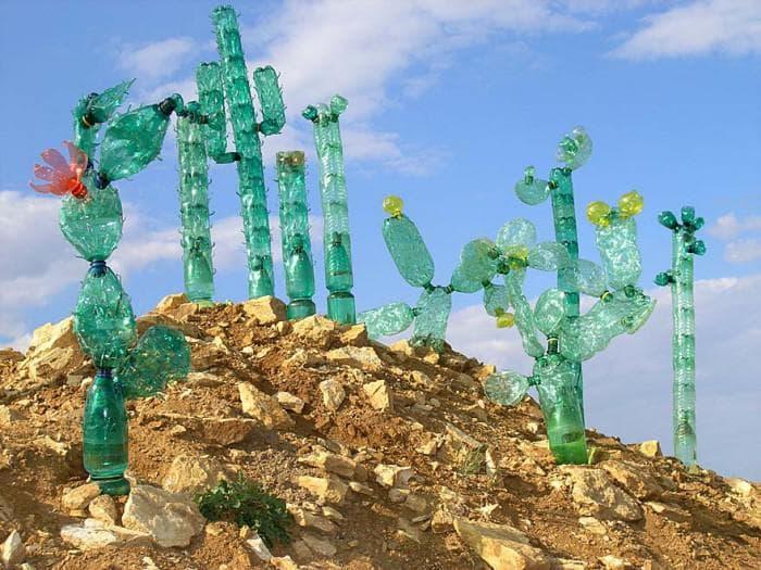 кактусы из бутылок
