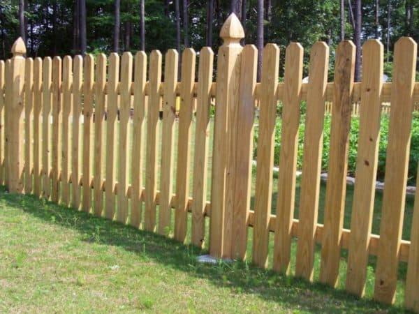 Забор из светлой древесины