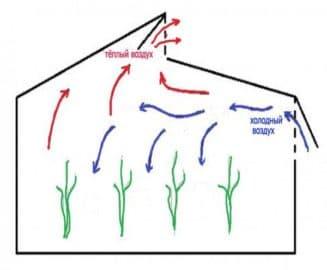 Схема движения воздуха в теплице