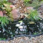 Пруд пластиковый садовый