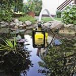 Виды водяных насосов для полива огорода