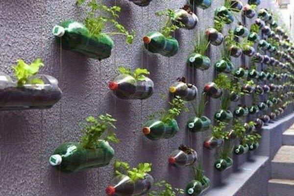 вертикальные грядки из пластиковых бутылок