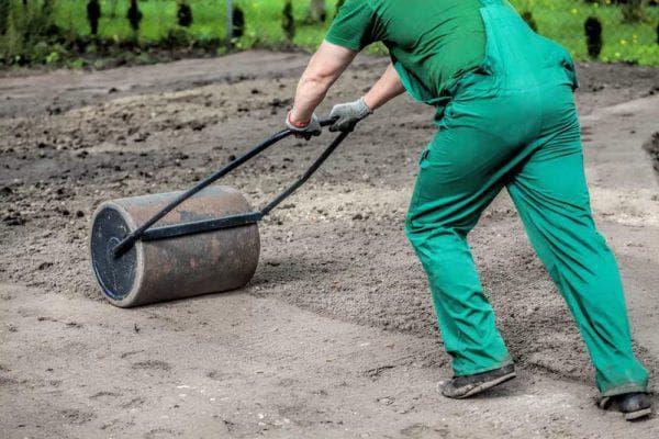 Как посадить газонную траву на участке правильно