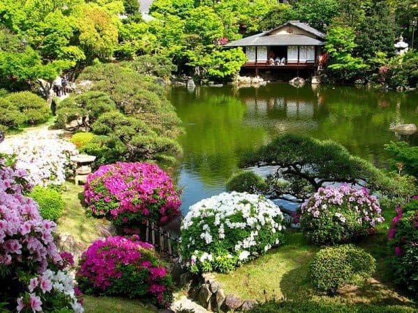 цветы на участке по японскому стилю