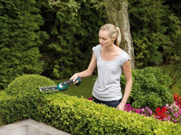 садовые ножницы для стрижки кустов BOSCH
