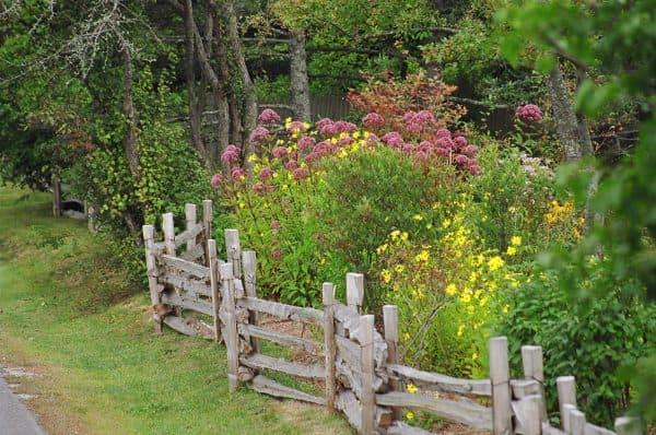 ограды в пейзажном стиле